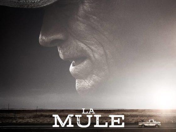 La Mule_Bonjour Marcel
